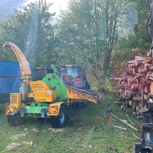 Forestry West Sussex