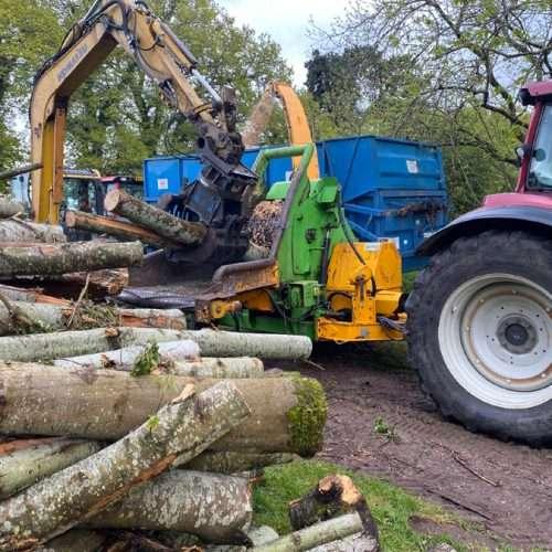 arborist tree care West Sussex